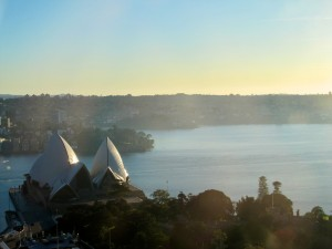 View from the Sydney InterContinental Pool
